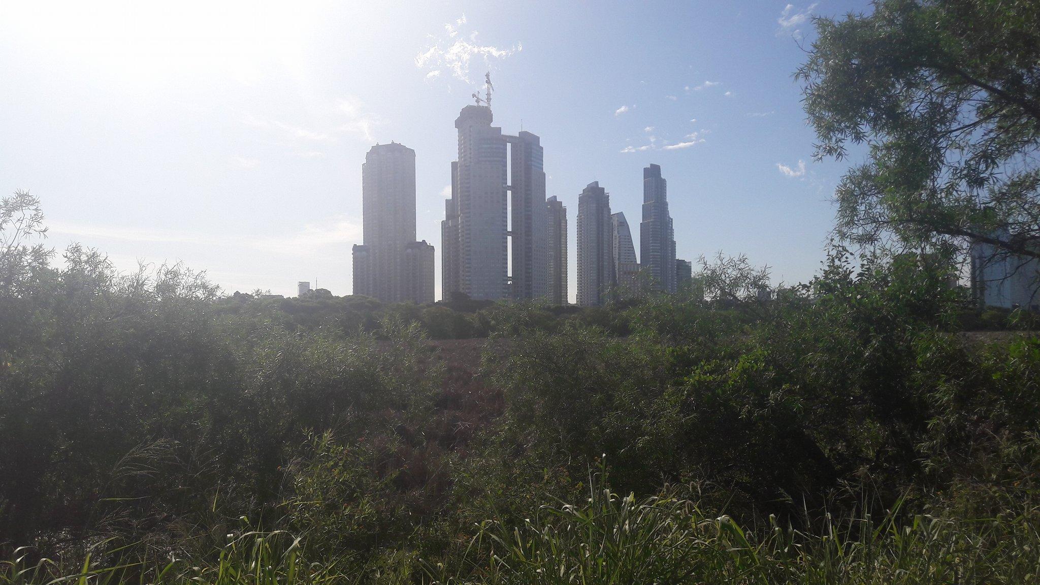 08.12.16 Skyline aus dem Park